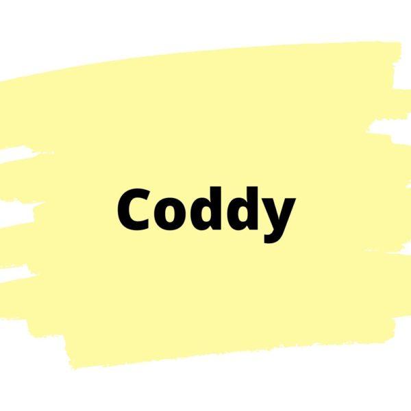 Онлайн школа программирования Coddy