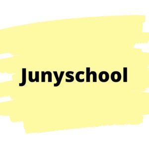 Онлайн школа программирования Junyschool