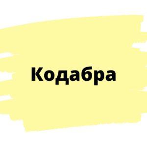 Онлайн школа программирования Кодабра