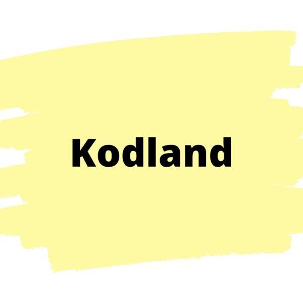 Онлайн школа программирования Kodland